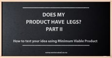 How to test your idea using Minimum Viable Products- Does my product have legs? Part II